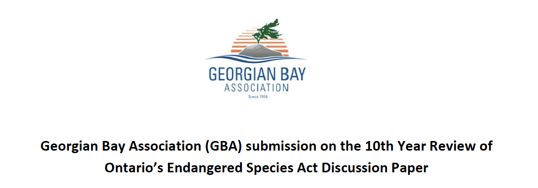 GBA Advocates for Better Protection for Endangered Species