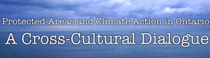 Cross-Cultural Perspectives on Environmental Issues