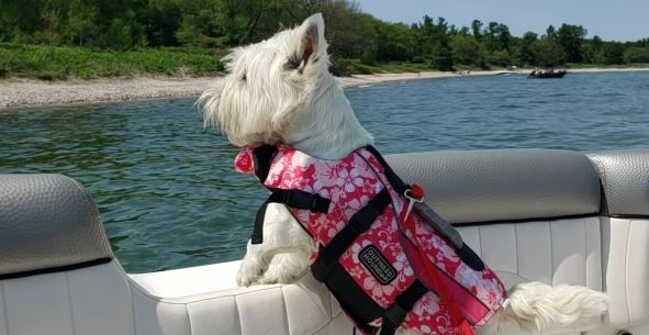 Lifejackets Only Work If You Wear Them!